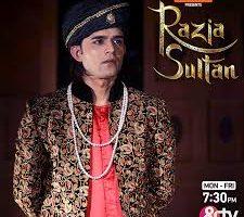 Razia Sultan....the story retold