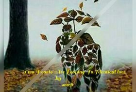 Two hearts are Looping in identical love